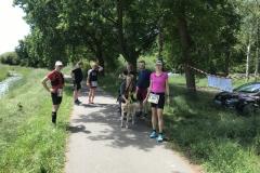 Startnummer 289: Mukolauf am Tankumsee Gifhorn mit 7 Freunden/Familie und Hund! -natürlich mit Abstand!