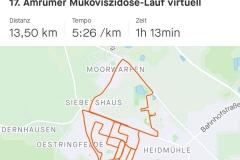Startnummer 257: Ein schöner Lauf durch das Schortenser Inselviertel. Auf den 13,5 Km habe ich neben Amrum virtuell viele weitere Nord- und Ostseeinseln besucht - wenn das nicht mal die ausgefallenste Strecke ist.😉
